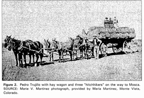 "Pedro Trujillo with hay wagon and three ""hitchhikers"" on the way to Mosca."