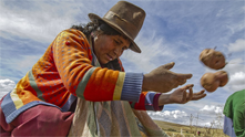 Breathing New Life into Inca Farming Practices